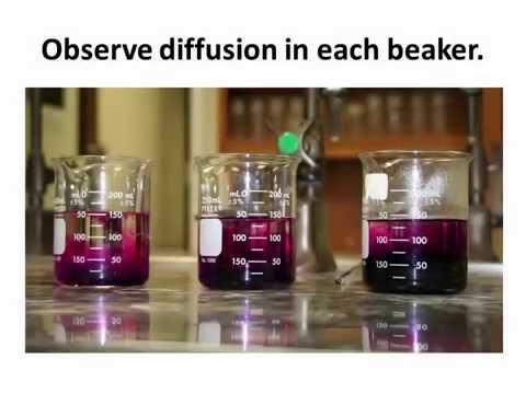Diffusion of Potassium Permanganate