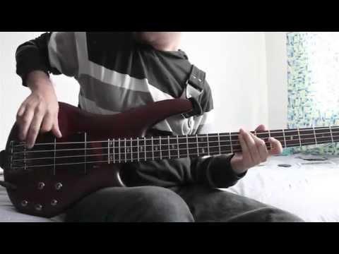 My own summer (shove it) cover bajo y guitarra