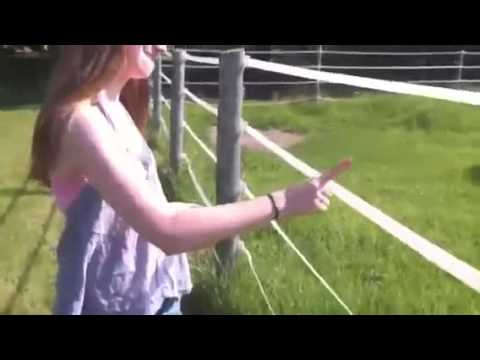 Idiot Girl touches electric fence LOL