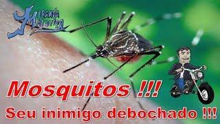 Junior Miranda - Factor 150 ED - Mosquito, seu inimigo debochado, Stand Up Comedy