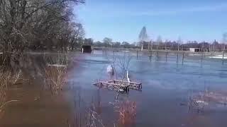 Потоп на эко-ферме в Даньшино-1