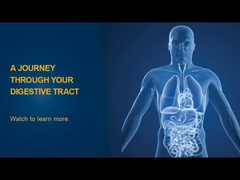 The Digestive Process  University of Michigan Health System  YouTube