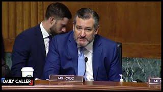 Ted Cruz's Fiery Exchange On Voter ID laws