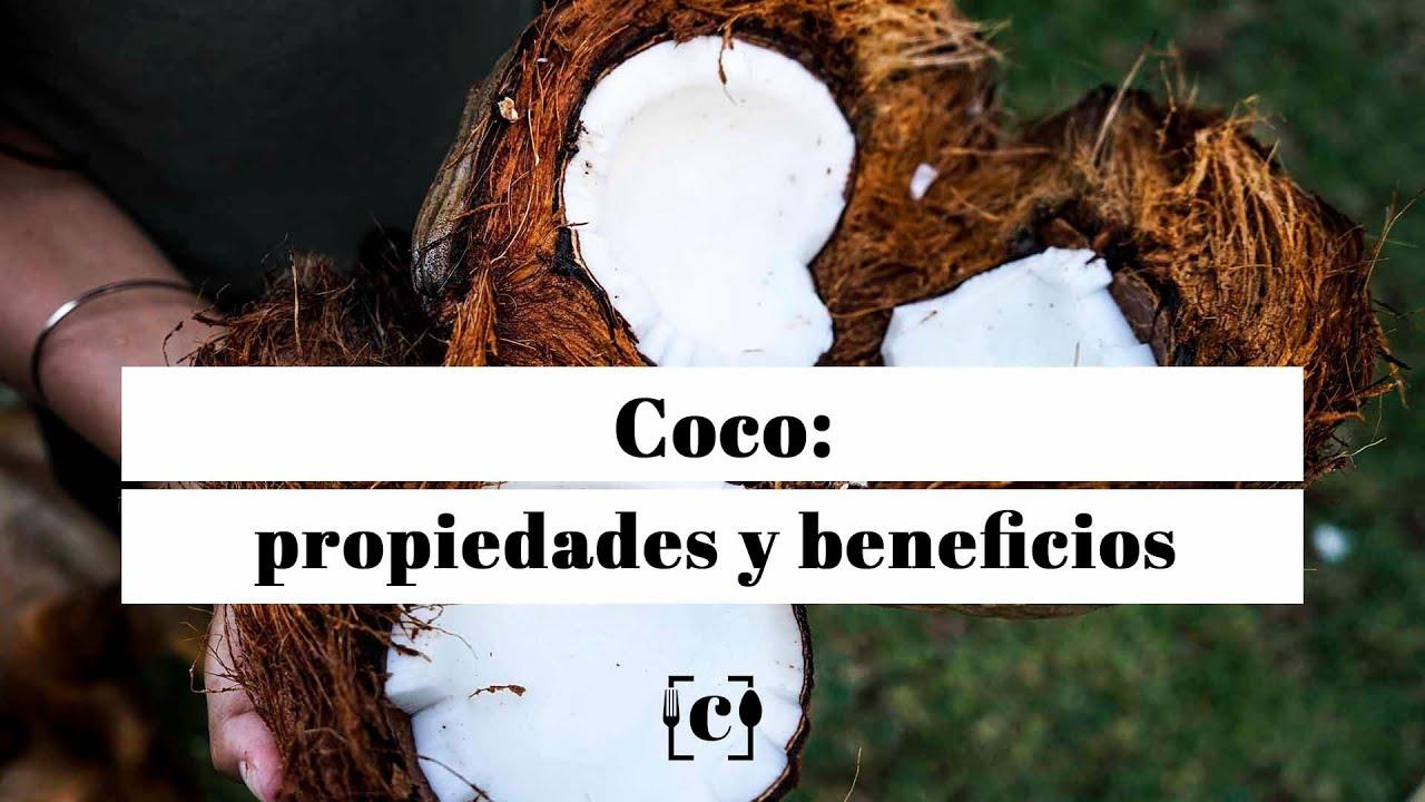 azucar de coco valor nutricional