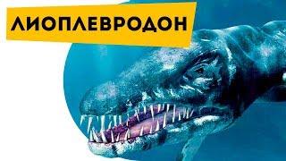 Наука для детей Динозавры | Лиоплевродон | Про динозавров детям