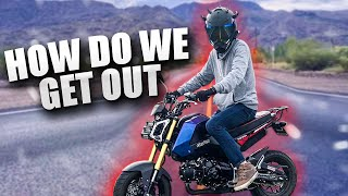 Grom Adventures | Episode 9 | We Got Trapped!
