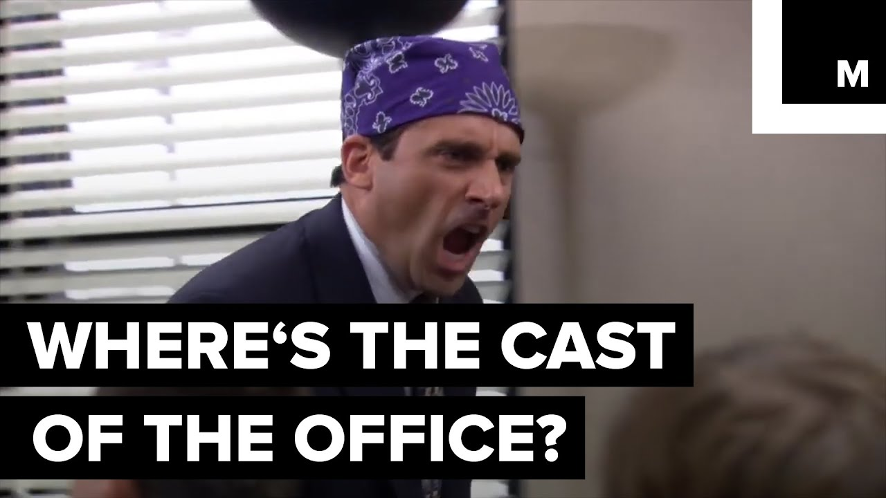 There's a Michael Scott quote to sum up every college major