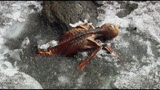10 Strangest and Creepy Things Found in Antarctica -2017