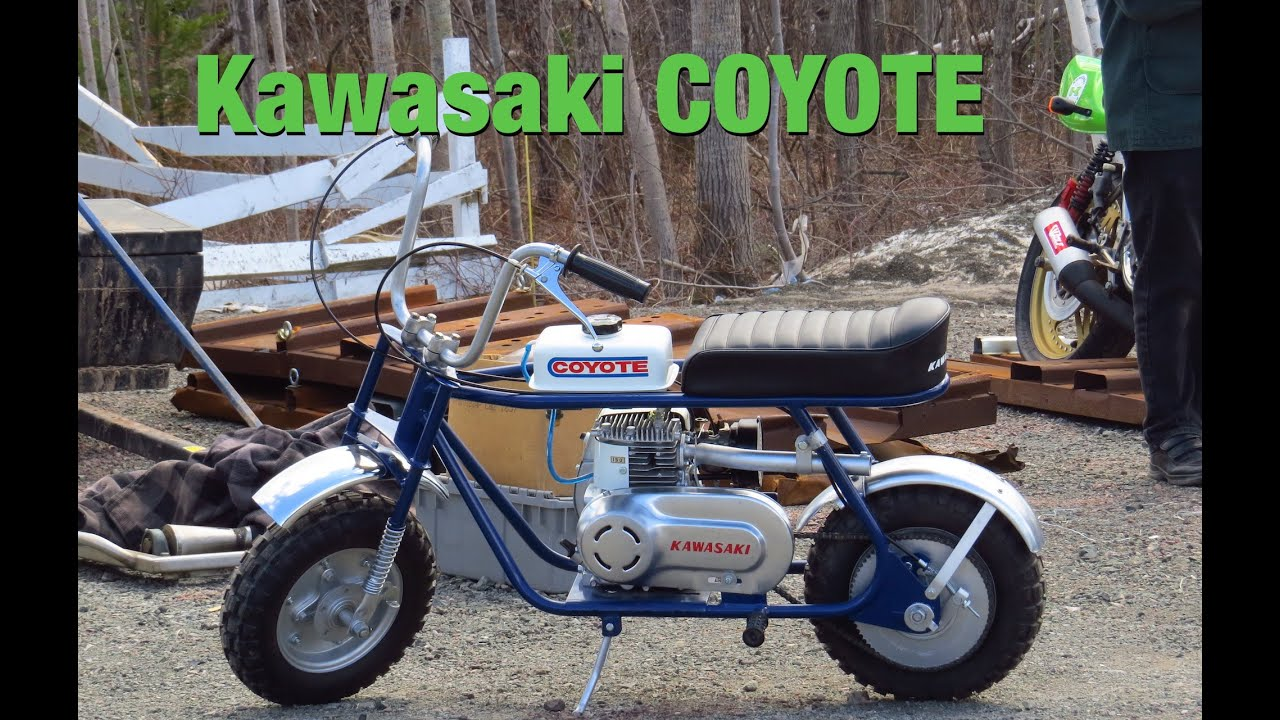 RARE Kawasaki Coyote Mini Bike - YouTube