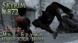 Skyrim s 872 Квест гильдии бойцов