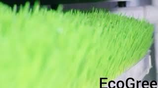 Корм для животных и птиц  EcoGreen