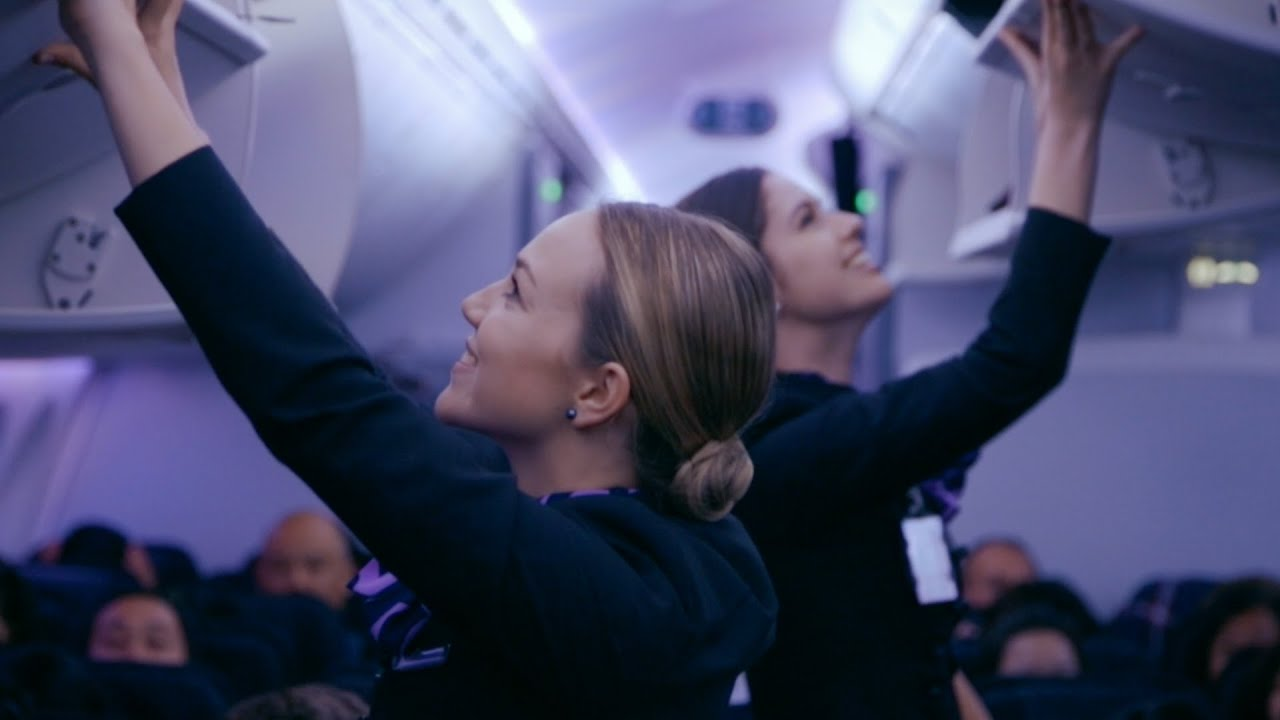 Air New Zealand Stewardess 737 bodypaint have nothing to