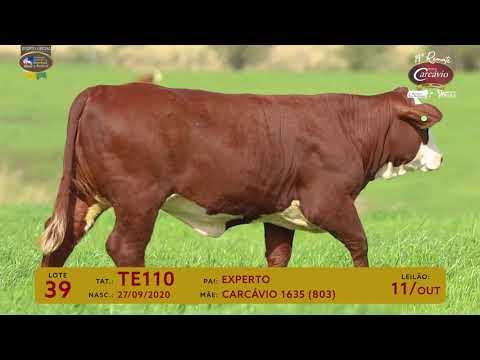 LOTE 39 - TAT TE110