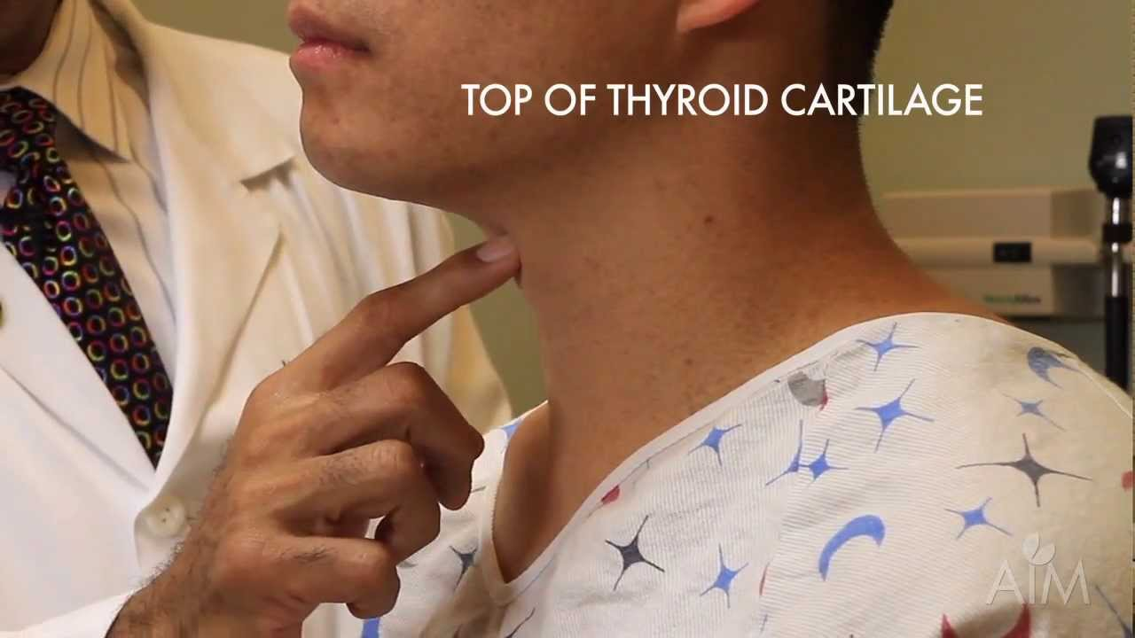 Thyroid Exam Stanford Medicine 25 Stanford Medicine