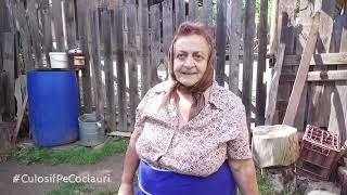 Ultima oprire din Țara Moților a fost la cea mai faină mătușă din satul Rogoz - mătușa Rodica Bumb 🆕