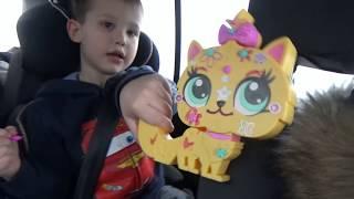 Download ВЛОГ Едем на авто делаем фруктовый челлендж распаковка сюрпризов с собачками Mp3 and Videos