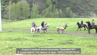видео Туристический комплекc