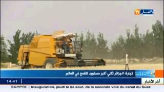 تجارة: الجزائر ثاني أكبر مستورد للقمح في العالم