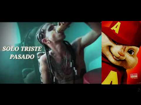 MANIAKO // SOLO TRISTE PASADO // VIDEO OFICIAL - ALVIN FT ARDILLAS