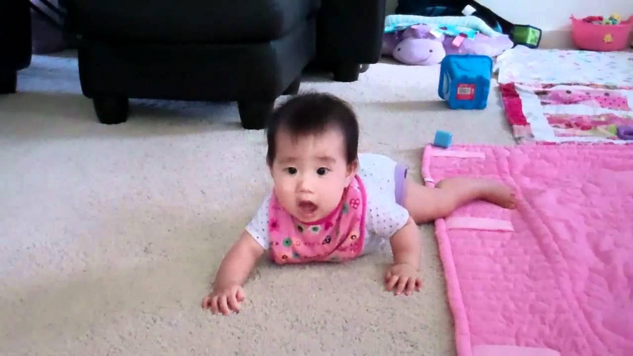 Carpet Biter
