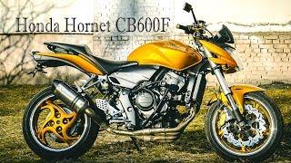 Motorcycle tuning . Honda Hornet CB600F 2007  (Gold)  2007