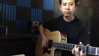 Rừng lá thay chưa - guitar cover