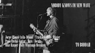 Nirvana - Nobody Knows I'm New Wave ** Studio Version ** (Cover by To Boddah)
