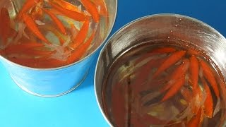 3D Goldfish Art For Sale Painting in Resins