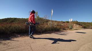 Powell Peralta SNAKES Review