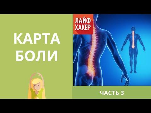 Остеоартроз - лечение болезни. Симптомы и профилактика