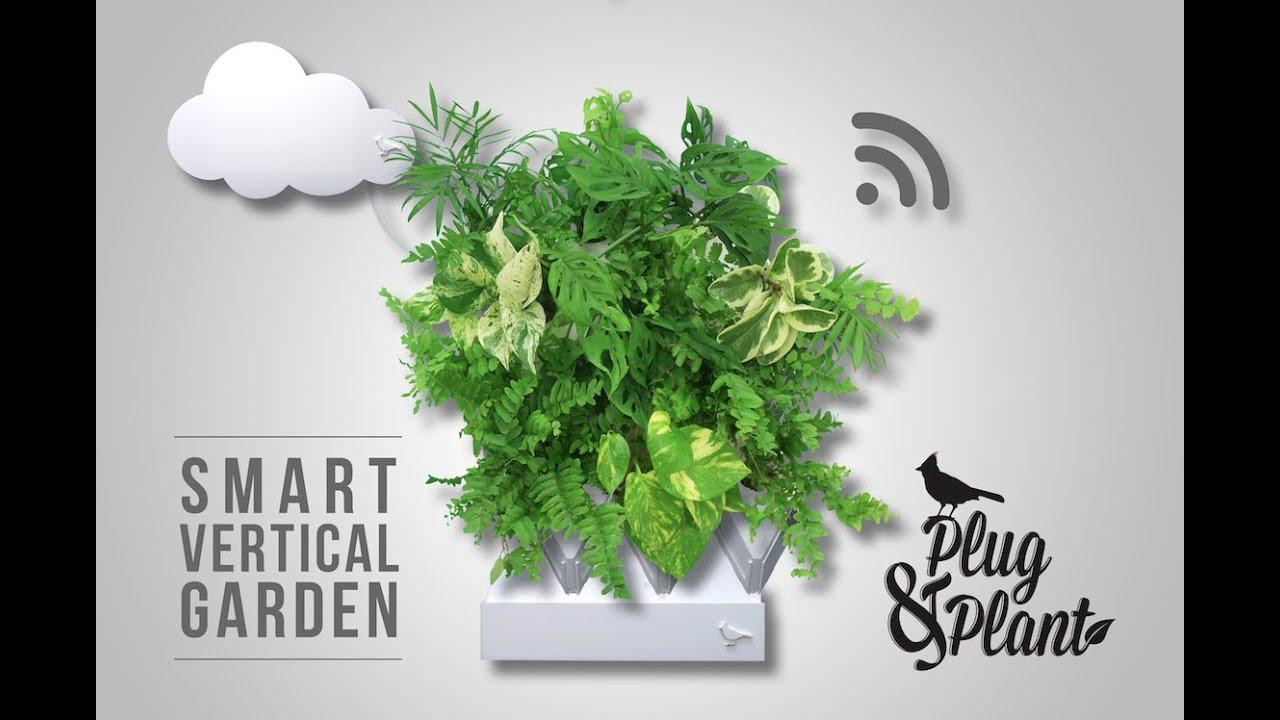 plug plant youtube