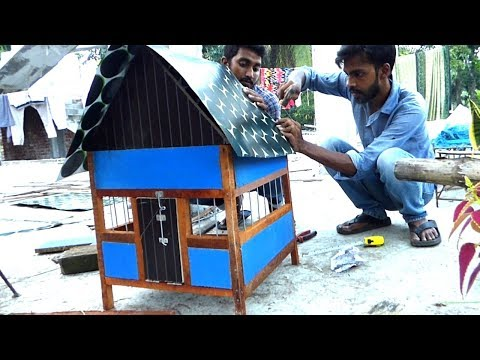 Easy to Make Your Fancy Pigeon Coop | Build Dove Birds House