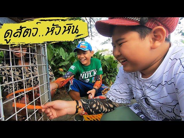 ติณณ์ กาย ตะลุย!! สวนสัตว์หัวหิน สนุกมากครับ | Take a trip to Hua Hin Zoo