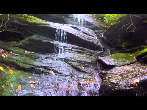 Toxaway River Preserve