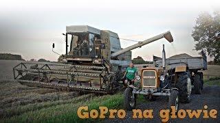 Żniwa na Polskiej Wsi - GR Mokrzyn ☆ GoPro na głowie #7 - Wtopy, wyciąganie & na 30 sypanie... ㋡