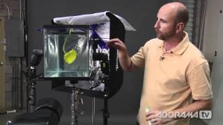 Creative Still Life Photography: Ep 216: Digital Photography 1 on 1: Adorama Photography TV