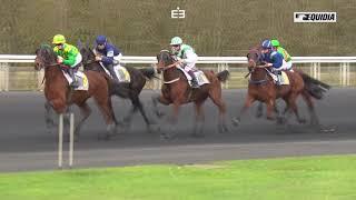 Vidéo de la course PMU PRIX DE L'ETRIER D'OR 2017