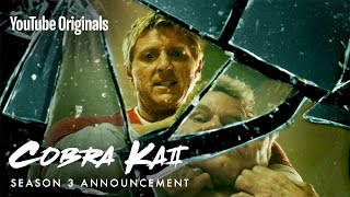You Want It. You Got It. Cobra Kai Season 3 Announcement!