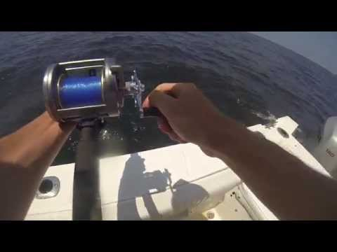 King Mackerel, Red Snapper, Bonito: Shanahan Charters- GoPro
