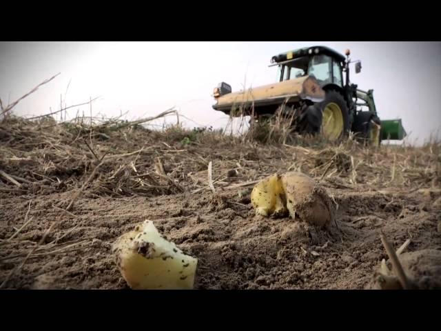 L' AGRICOLTURA MUORE DI TASSE