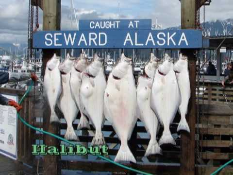 Touring Mainland Alaska (Part 2 of 3)