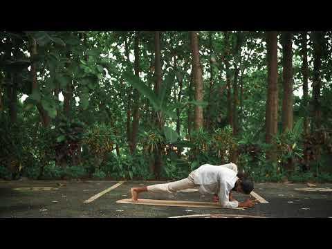 Utthan Pristhasana - Lizard Pose