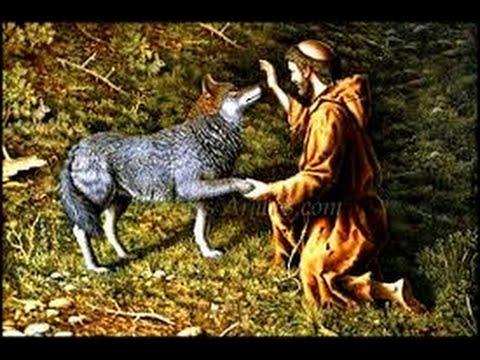 Resultado de imagen para los motivos del lobo