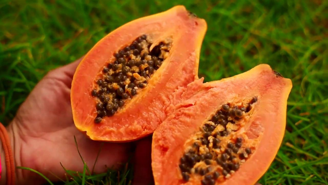 New Generation Produce Wholesale Market - Fruitarian Heaven in New York  City!