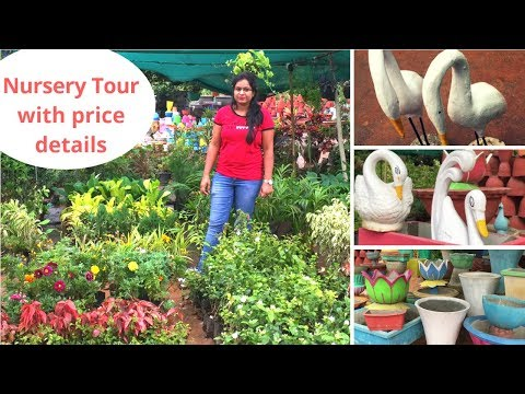 Nursery Tour - Plants with price ||Variety of Pots and Garden statue ||Bangalore nursery visit