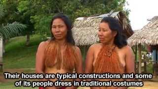 Video The Amazon Colombia Travel Video download MP3, 3GP, MP4, WEBM, AVI, FLV September 2018