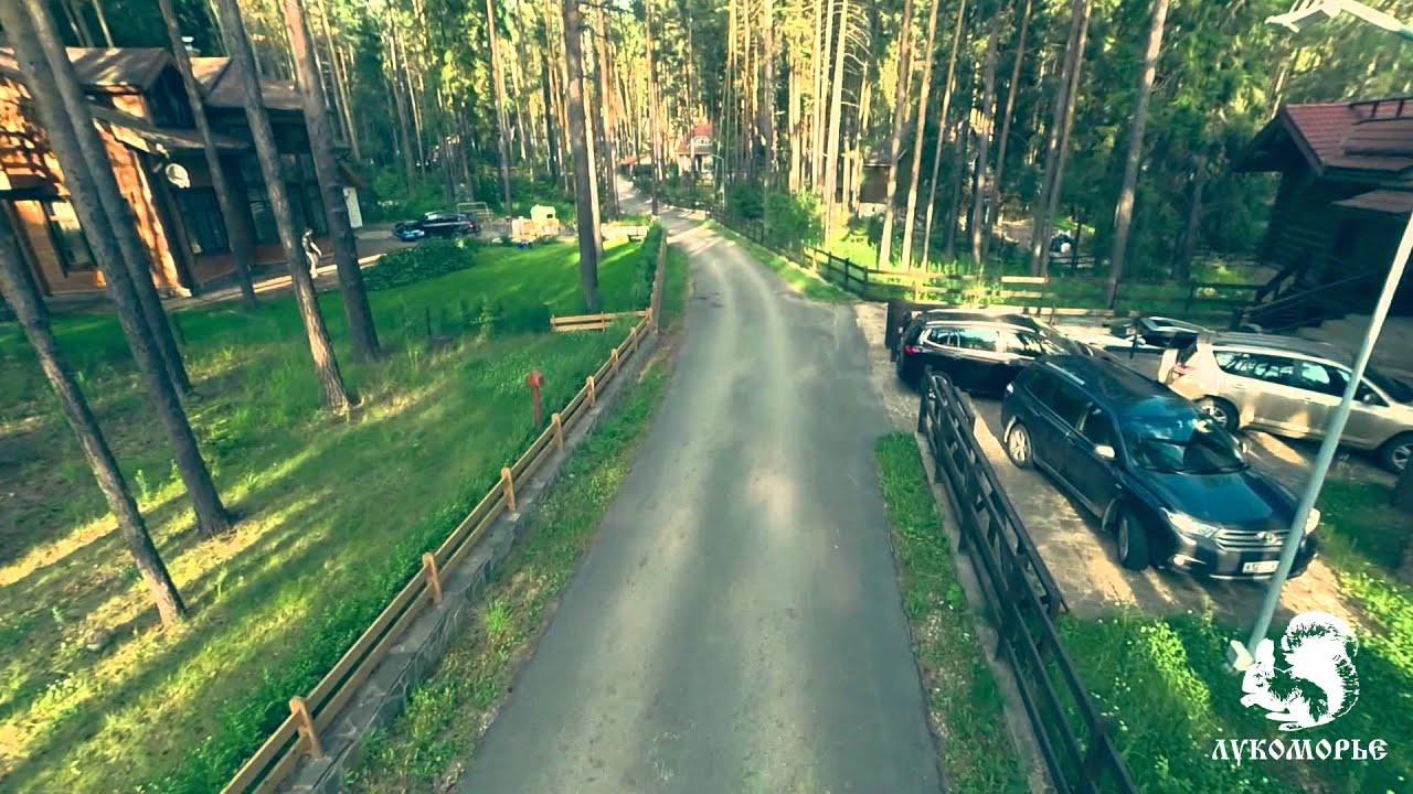 Парк живых бабочек. Пермь / Butterfly Park. Perm - YouTube