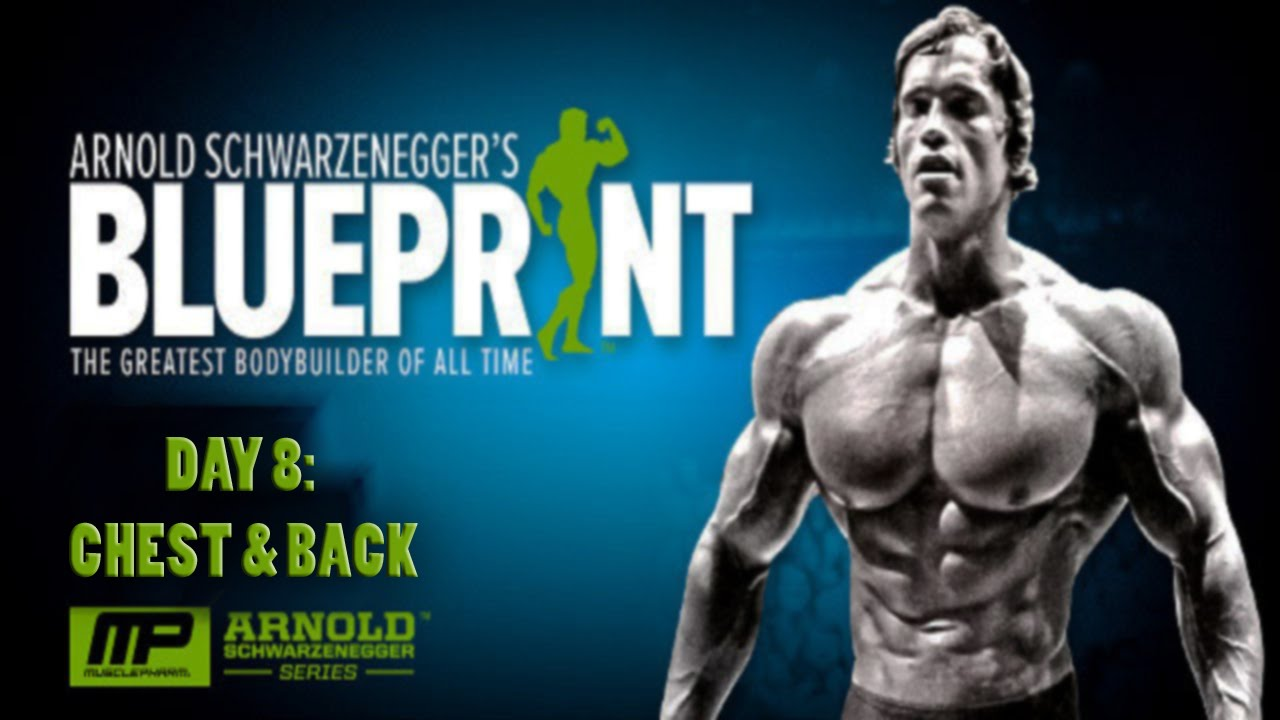 Arnolds blueprint to cut day 8 chest back youtube arnolds blueprint to cut day 8 chest back malvernweather Images