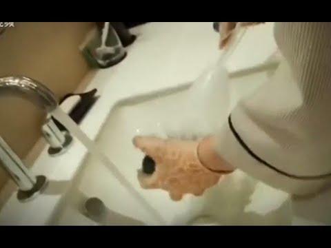 В пятизвездочных отелях Китая, горничные мыли посуду туалетным ершиком