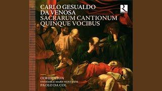 Sacrarum cantionum quinque vocibus, Liber primus: Illumina faciem tuam, W viii, 60